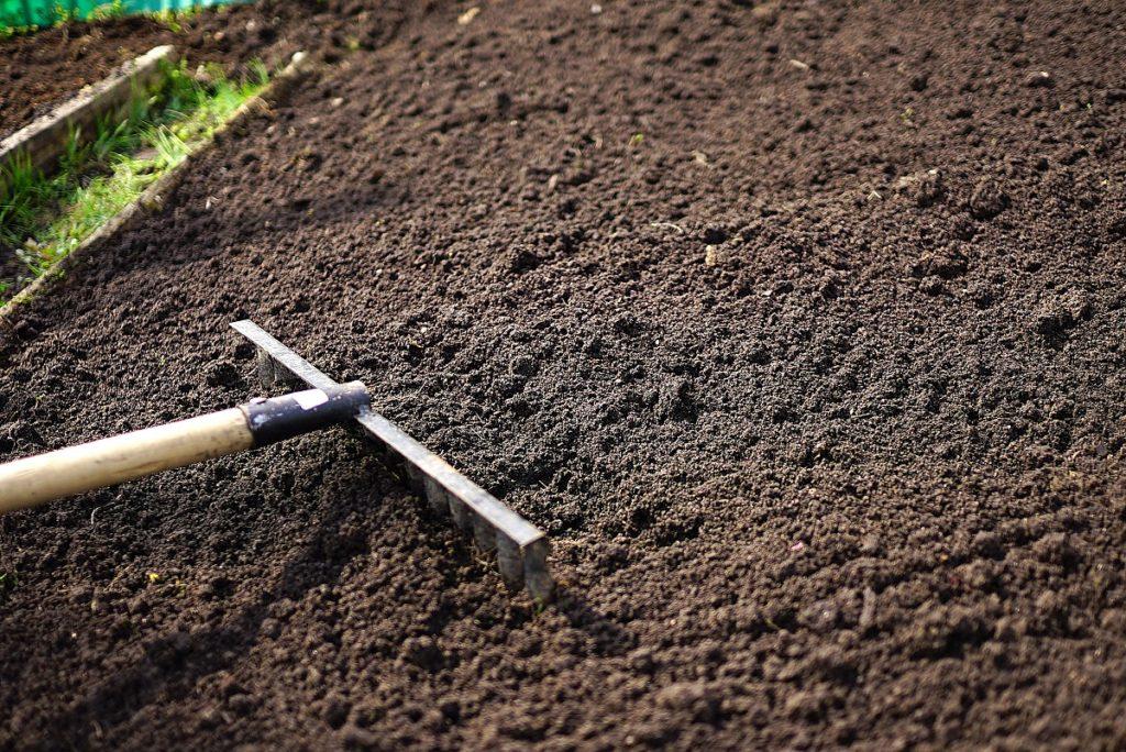 Using a rake in the garden