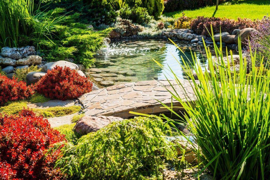 garden with man made pond