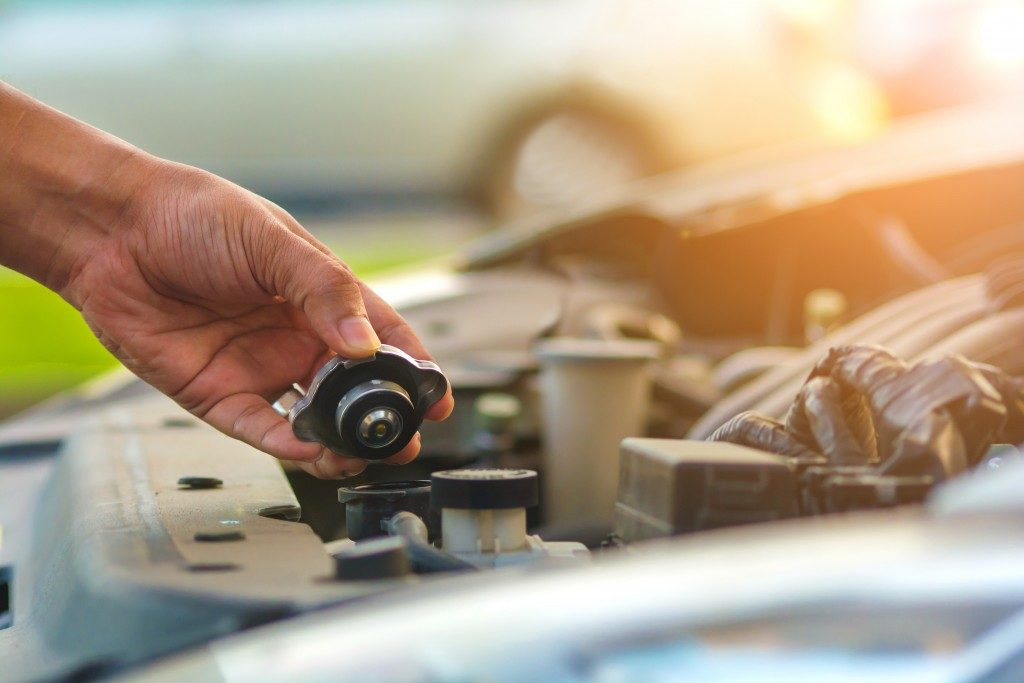 checking car's oil tank