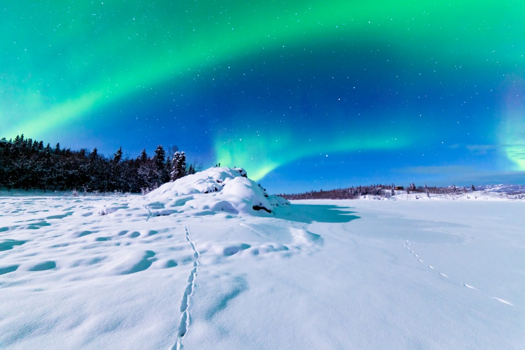 Spectacular display of intense Northern Lights or Aurora borealis