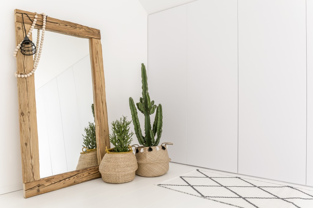 mirror and plants